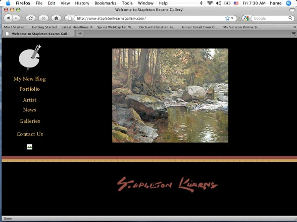 image of the homepage for Stapleton Kearns Gallery