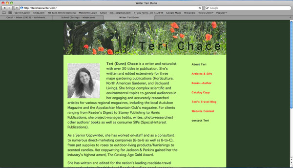 image of homepage for website of Teri Dunn